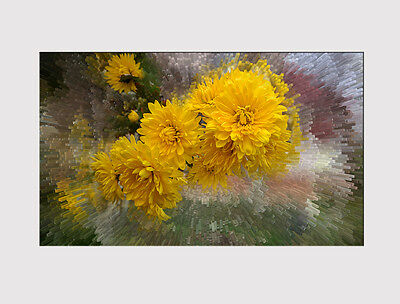 637 X LARGE CANVAS 18''x32'' WALL ART ABSTRACT FRESH YELLOW FLOWER PRINT PICTURE