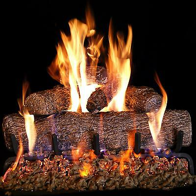 Embers Peterson RealFyre 24-inch Live Oak Gas Log Set Vented Burner Match Light