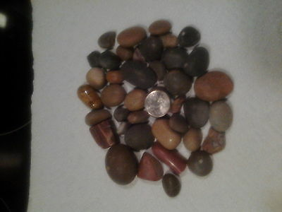 lake superior agates 1 lb. lots