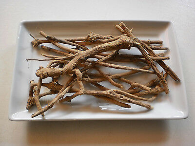 African Dream Root; Silene Capensis; 114g