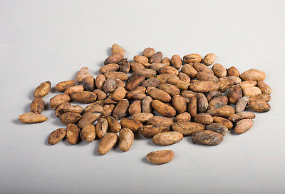 Cacao Beans, Raw (Criollo Variety) : Theobroma Cacao, Organic; 227g