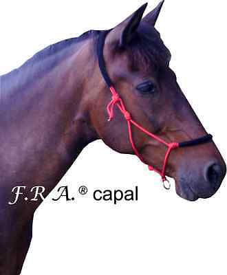 F.R.A. Capal Riding and Trainig Halter