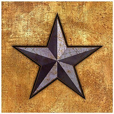 Thirstystone Occasions Trivet, Texas Star, Multicolor