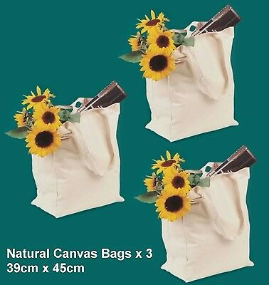 Arty's 100% Cotton Canvas Tote Bag - Ideal Painting Project x 3