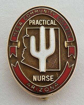 Rare 10K Solid Gold Mesa Community College Arizona Practical Nurse Pin