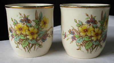 Two (2) Royal Doulton England Somerset D6029 Egg Cups