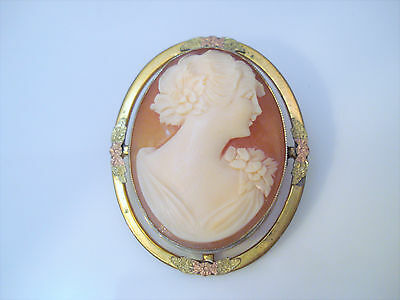 Antique Art Nouveau Gold Filled Carnelian Cameo Pin Brooch