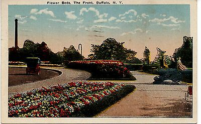 Flower Beds, The Front, Buffalo, New York, Vintage Postcard, Aug