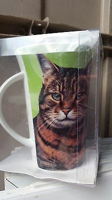 TALL TABBY CAT CHINA MUG plus Foyles CARING FOR YOUR CAT  Handbook