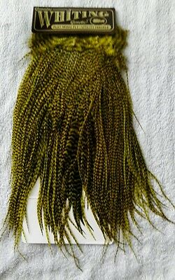 Whiting Flatwing Utility Grizzly Medium Olive Rooster Saddle Fly Tying Materials