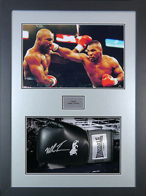 Mike Tyson Signed Boxing Glove 3d Panoramic Framed Display +COA  Full size Glove