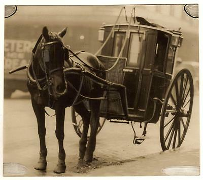 Vintage PHOTOGRAPH-Horse Drawn Coach, Peters Ice Cream in Bkgrnd, Sydney? c1910s