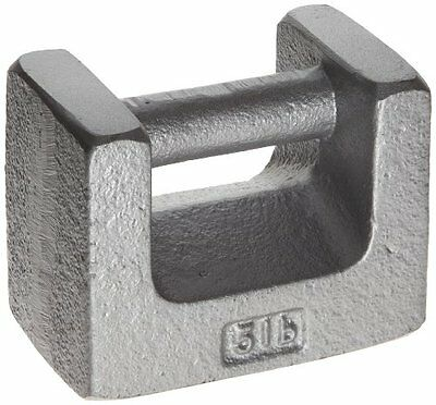 Rice Lake Cast Iron ASTM Class 7 Painted Grip Handle Test Weight, 5lbs Mass