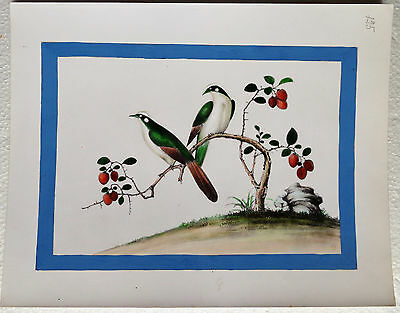 CINA (China): Very fine and old Chinese watercolor print painting - birds (2)