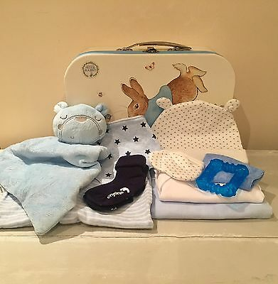 Baby Boy Gift Set Hamper Basket Nappy Cake Baby Shower Gift Blue Peter Rabbit