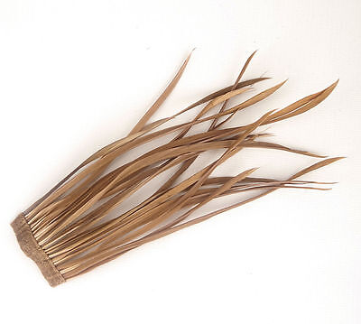 20 Coffee Goose Biot Feathers length 15cm-19cm for crafts, millinery etc