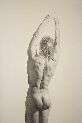 Male Nude Study Original Drawing Realism on paper with Pencil (39.5 x 71 cm)