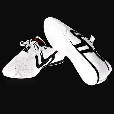 New Unisex Taekwondo Kung Fu Karate Training Shoes Footwear Sneakers