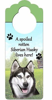 """Siberian Husky Wood Sign """"A Spoiled Rotten Siberian Husky Lives Here""""with A"""