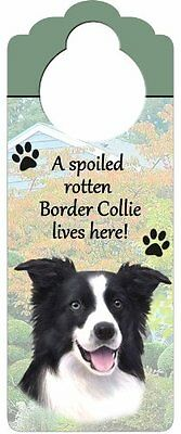 """Border Collie Wood Sign """"A Spoiled Rotten Border Collie Lives Here""""with Art"""