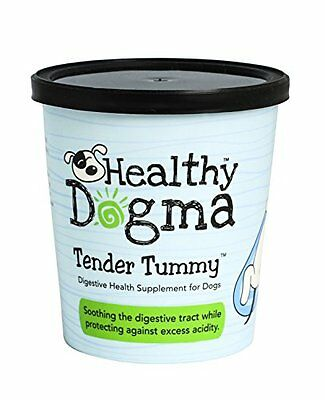 Healthy Dogma Tender Tummy Digestive Health Kelp Supplement for Dogs