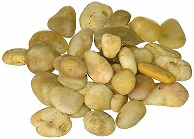 Firefly Imports River Stones Rocks, 1-1/2-Inch to 2-Inch, Natural Ivory