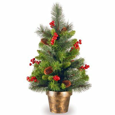 National Tree (CW7-701-20) Crestwood Spruce Small Tree with Silver Bristle,