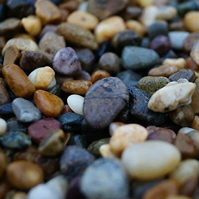 Medium Irish Beach Pebbles 20kg, 28-50mm, Decorative Garden Stone Natural Pebble