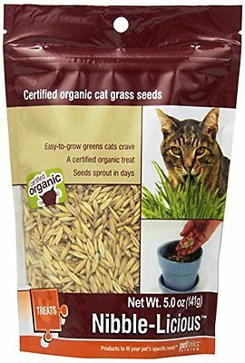 Petlinks Nibble-Licious Cat Grass Seeds 5 oz