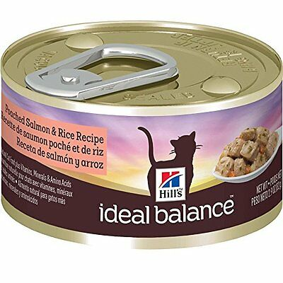 Hill's Ideal Balance Poached Salmon Recipe 24-Pack Cat Food Can, 2.9-Ounce