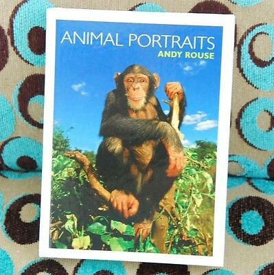 Animal Portraits. By Andy Rouse. Hardcover Animal Photo Book. Brand New.