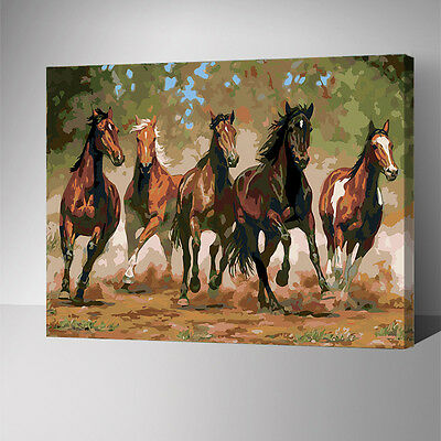 Framed Painting by Number kit Five Horses Galloping Forward Steeds Animal YZ7587