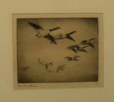 Original  Etching by Frank Benson 'In The Clouds'  1916