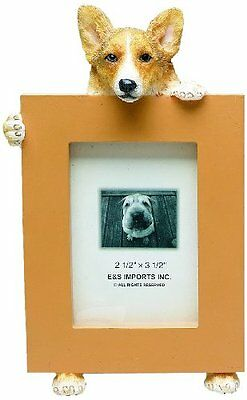 Welsh Corgi Picture Frame Holds Your Favorite 2.5 by 3.5 Inc