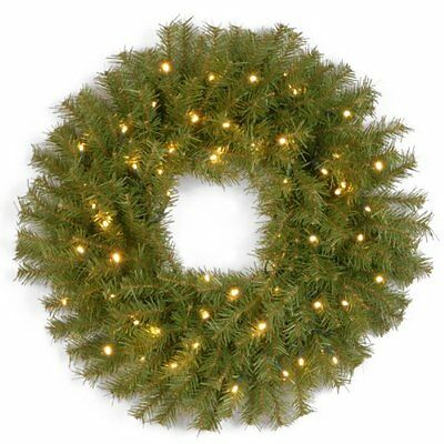 National Tree 24-Inch Norwood Fir Wreath with 50 Concave Soft White LED Lig