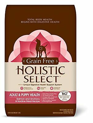 Holistic Select Natural Grain Free Dry Dog and Puppy Food, Salmon and Ancho