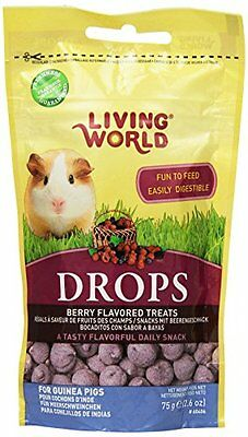 Living World Guinea Pig Treat, 2.6-Ounce