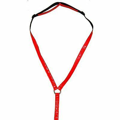 Intrepid International Reflective Breastplate, Red