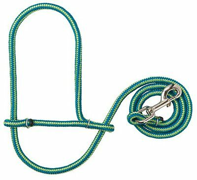 Weaver Leather Poly Rope Sheep Halter with Snap, Blue/Lime