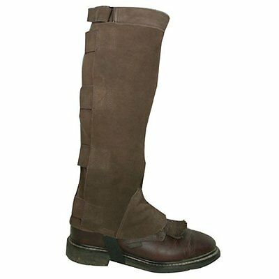 Intrepid International Deluxe Suede Half Chaps, Brown, Large