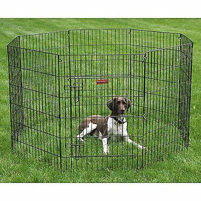 "Everlasting Exercise Dog Pen with Door Size: X- Large (42"" H"