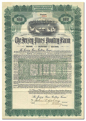 Jersey Pines Poultry Company Bond Certificate - Chickens w/ Eggs Vignette