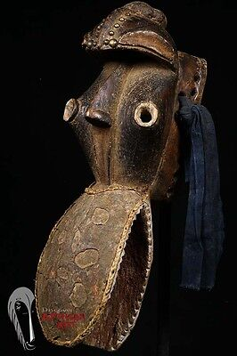 Discover African Art Dan Bete Zoomorphic Mask with a Big Beak