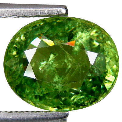 2.33 Cts Natural DEMANTOID - Outstanding Intense green natural Horse tailed GEM