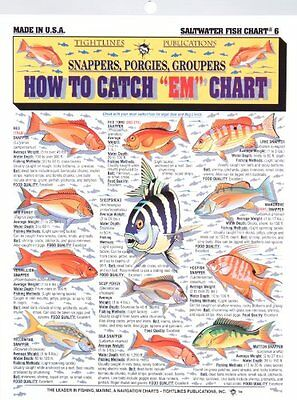 Fishermans Saltwater Fish Chart #6