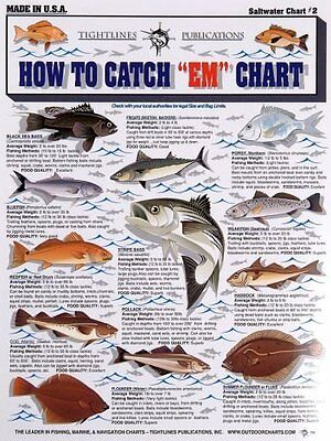 Fishermans Saltwater Fish Chart #2
