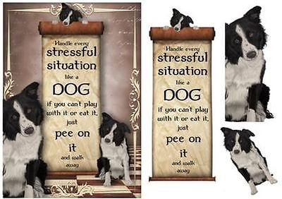 Handle Every Stressful Situation Like a Dog - border Collie by Anne Lever