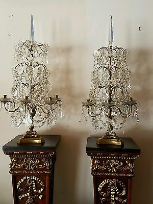 Pair of Antique French Bronze and Crystal Candelabras (circa 1890)