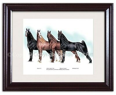 FRAMED TENNESSEE WALKER walking HORSE ART painting - FAMOUS STALLIONS beautiful