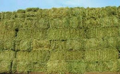 small bale hay and straw sheep horses cattle